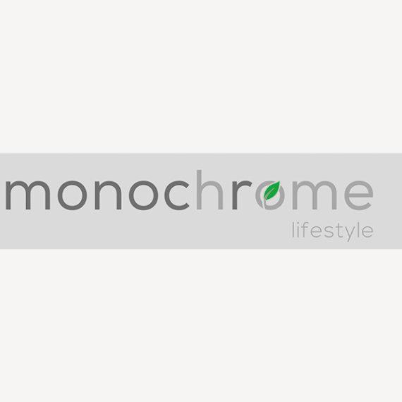 Logo monochrome home